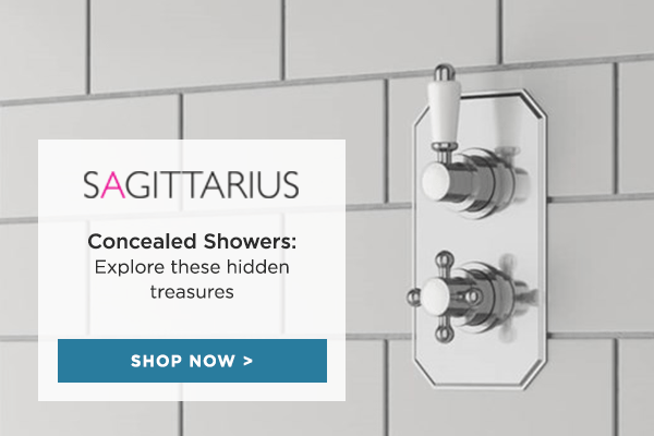 Concealed Shower Solutions: explore these hidden treasures