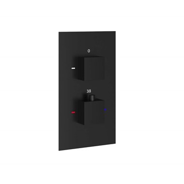 Harbour Status Matt Black 1 Outlet Concealed Thermostatic Shower Valve