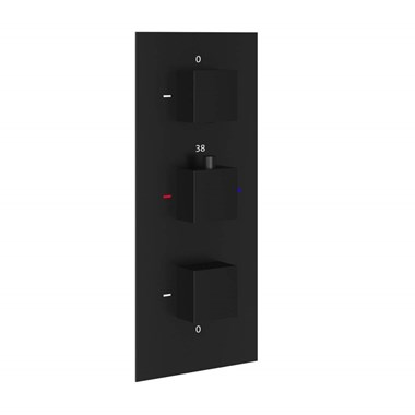 Harbour Status Matt Black 2 Outlet Concealed Thermostatic Shower Valve