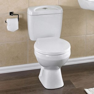 Phoebe Modern Close-Coupled Toilet with Seat